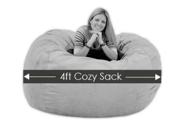 Cozy Sack 4 Feet Bean Bag Chair,